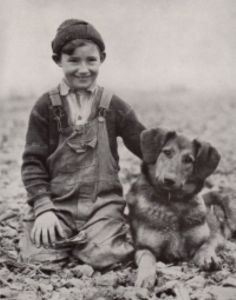 boy and a dog