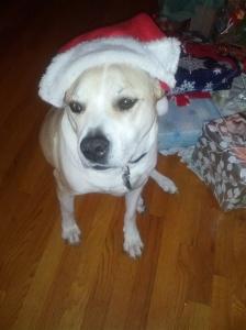 phil santa hat 2