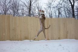 gipsy jumping 2